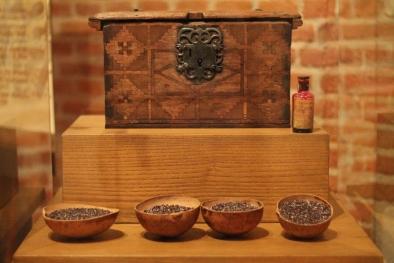 Grana Cochinilla (Museo de las culturas)